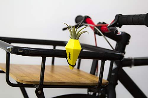 Vase als witziges Geschenk für Fahrradfahrer
