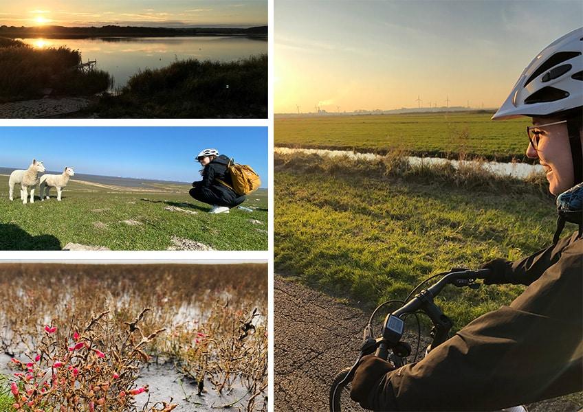 Die 55 schönsten E-Bike Touren in Deutschland praktisch ausprobiert