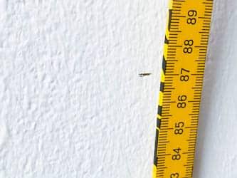 Rahmenhöhe Fahrrad: Die Schrittlänge vom Boden bis zur Markierung messen